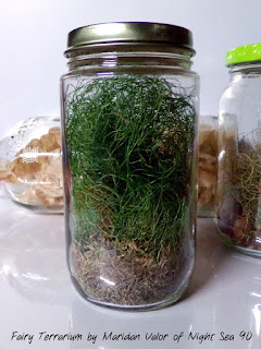 Feathered Fairy Terrarium; back of terrarium allowing you to see the dried grass with roots and dirt still attached. Night Sea 90