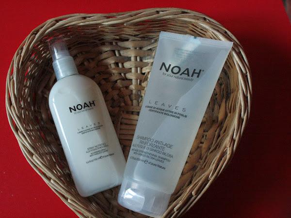 Noah & i Suoi Prodotti A base di Acque Attive di Foglie Certificate Biologiche
