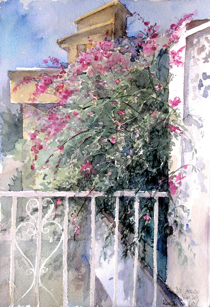 Artima as buganvillas acuarela watercolor - Fotos de buganvillas ...
