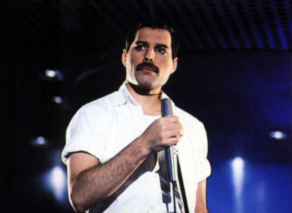 Freddie Mercury Hairstyle Men Hairstyles Men Hair
