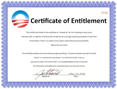 Saucy american in nz the entitlement party u r not invited but u have to pay for This certificate entitles you to