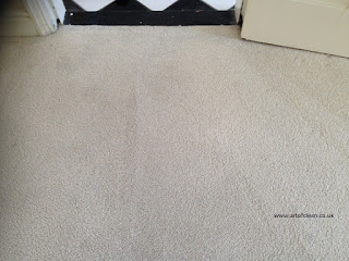 carpet cleaning Cambridge art of clean