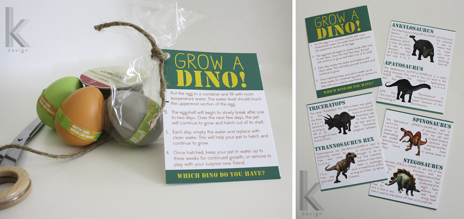 growing dinosaur egg instructions