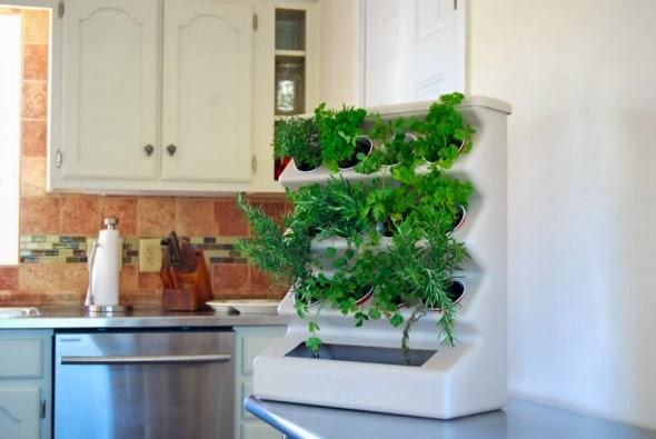 Meble kuchenne premium aran acja kuchni zio a w kuchni for Eco indoor garden house