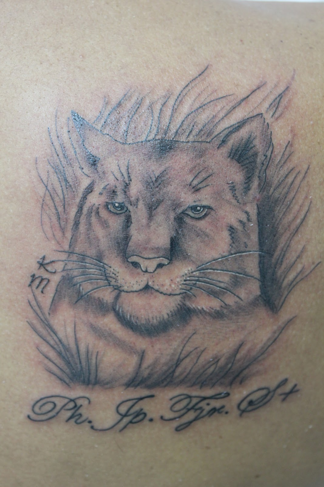 ink me female lion tattoo tatuagem leoa. Black Bedroom Furniture Sets. Home Design Ideas