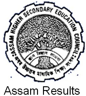 seba assam results.nic.in Assam State Board Public Exam Results 2013