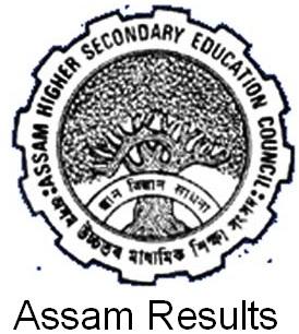 seba assam results.nic.in Assam State Board Public Exam Results 2013
