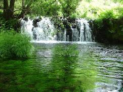 rio verdugo