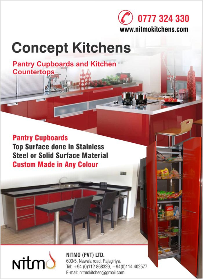 Pantry Cupboards  Top Surface done in Stainless  Steel or Solid Surface Material  Custom Made in Any Colour