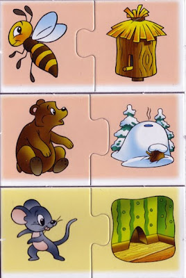 animales y sus casas