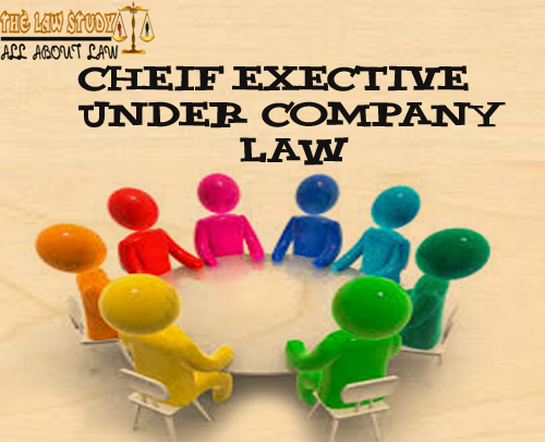 Chief executive its appointment, removal,