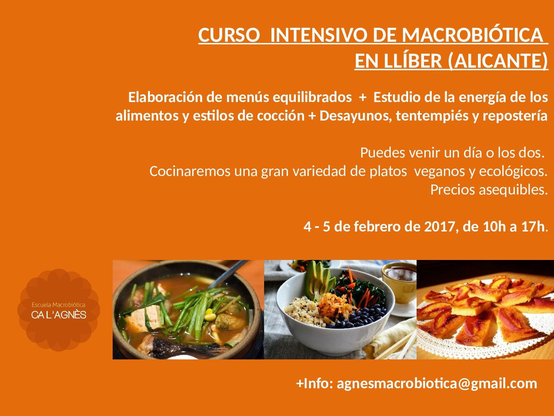 CURSO DE INTENSVO DE INTRODUCCIÓN A LA MACROBIÓTICA EN LLÍBER (Alicante)