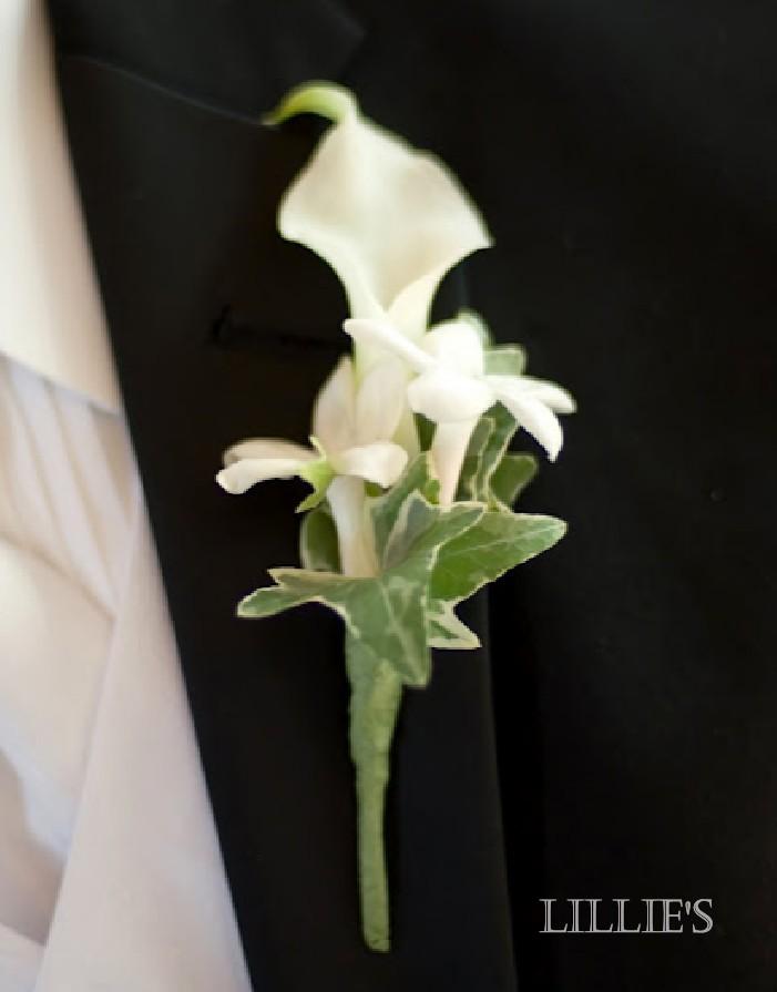 lillie 39 s flower journal boutonnieres. Black Bedroom Furniture Sets. Home Design Ideas