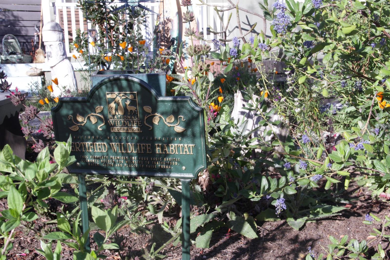 mar vista green garden showcase 3545 redwood avenue cluster 5