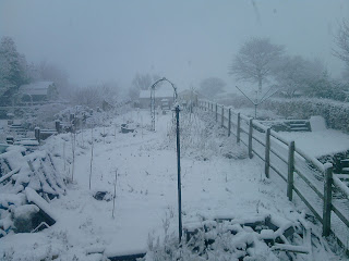 Snow in the lower garden.