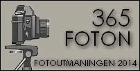 Utmaning 365 foton