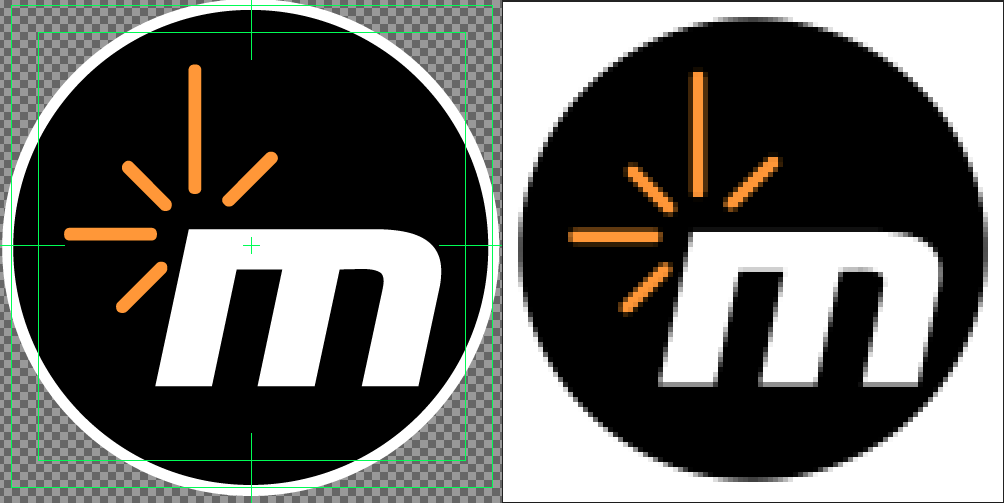 The logo image on the left is vector-based while the right side is bitmapped.