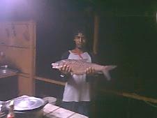 Mat- Ikan Kelah (Terengganu)