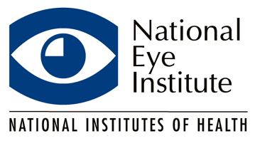 National Eye Institute Summer Internship Program and Jobs