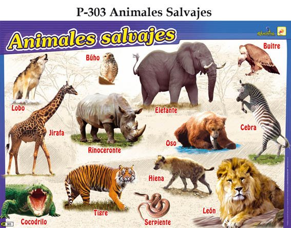 ESTHER EN EL COLE: Animales de la granja y animales de la selva.