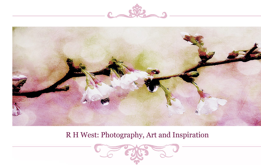 RHWest - Photography, Art and Inspiration