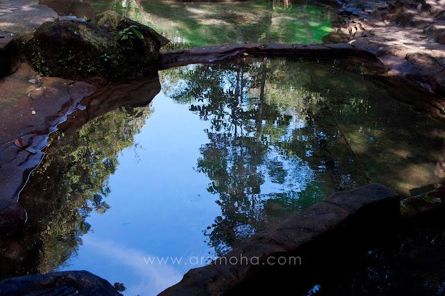 reflection, photography, taman rimba teluk bahang, tempat menarik di penang, lokasi berkelah, masa bersama keluarga, tenangkan fikiran,