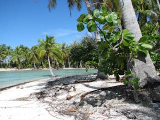 Voyages bergeron bob trotteur tahiti un r ve devenu r alit - Office du tourisme tahiti ...