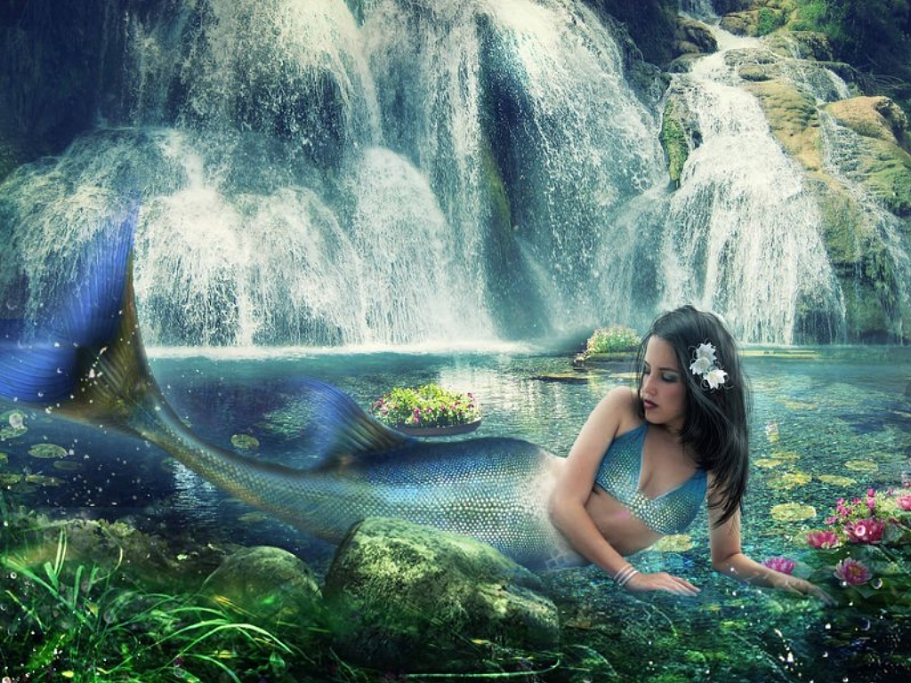 Mermaids Wallpapers | Fun Animals Wiki, Videos, Pictures, Stories