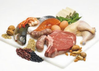 asam urat, purin, makanan purin tinggi, purina, lemak, kolesterol