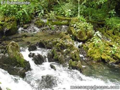 Aguas del río Tioyacu (Rioja, Altomayo, Perú)