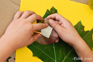 Apply tape to the back of each leaf