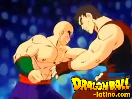 Dragon Ball capitulo 107