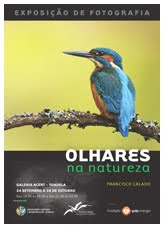 OLHARES NA NATUREZA - TONDELA