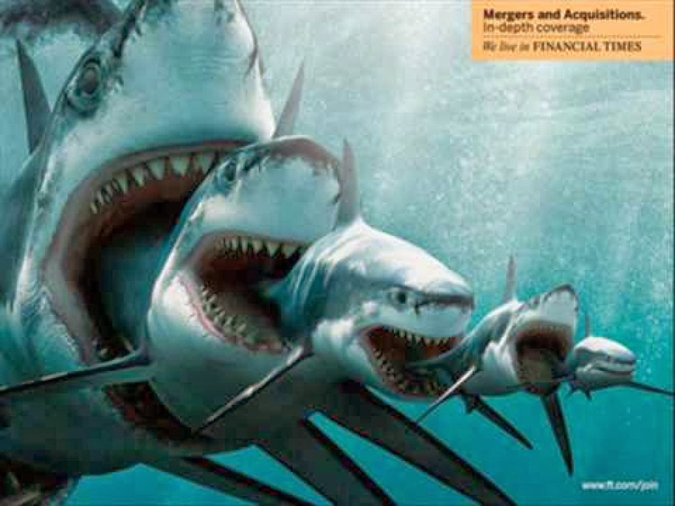 Shark wall decals high definition images