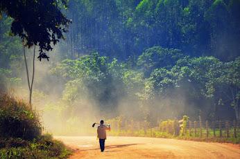 RECHERCHE PHILOSOPHIQUE : Nature / Culture