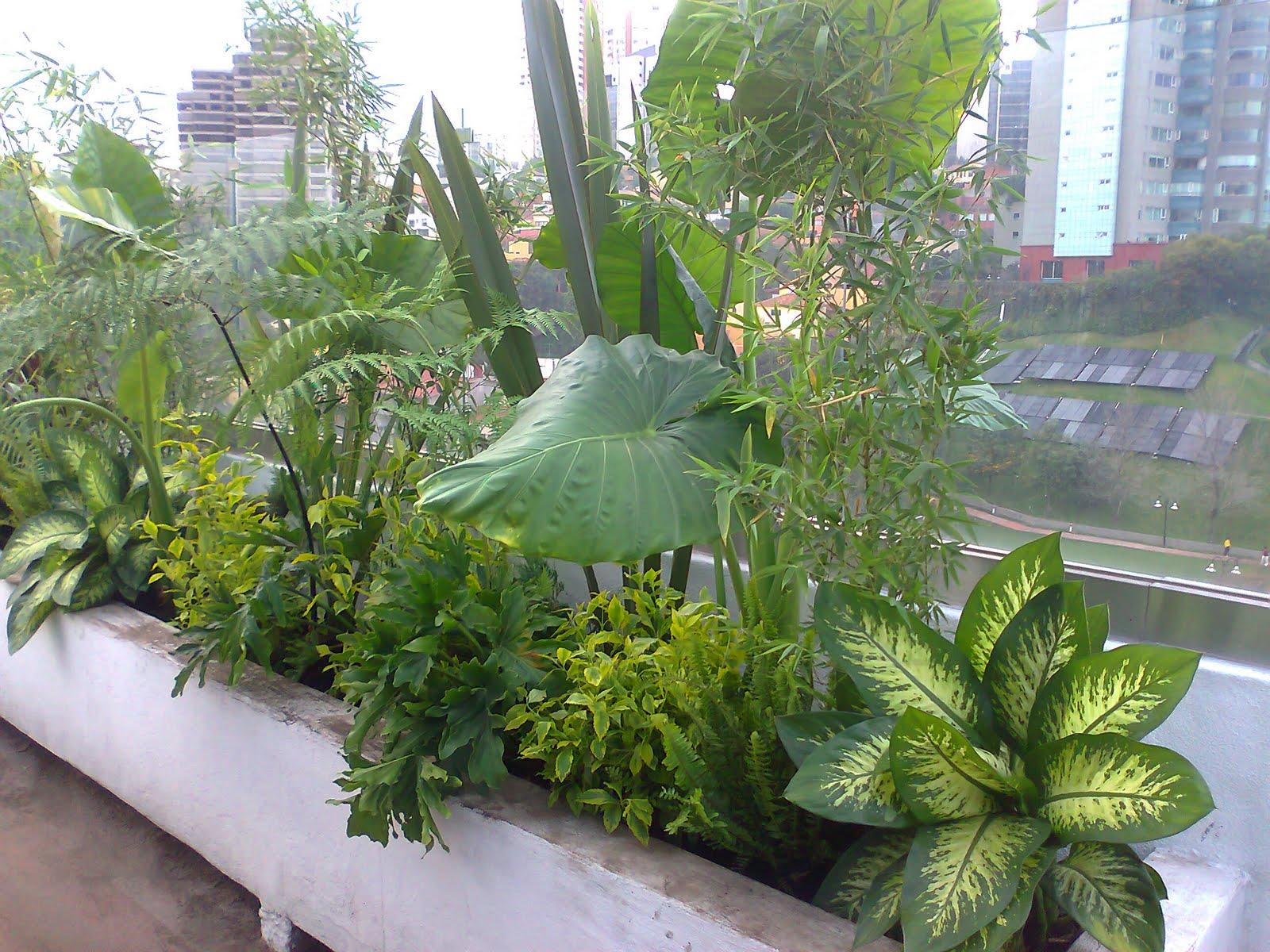 Jardineria xochimilco asociacion de jardineros de xochimilco for Jardin xochimilco