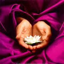 Una flor que se abre vale más que mil pétalos caídos