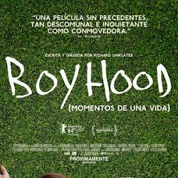 Poster Boyhood 2014