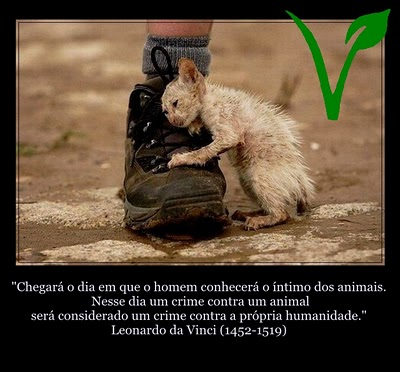 """""""O justo atenta para a vida dos seus animais, mas o coração dos perversos é cruel."""" Prov. 12:10."""