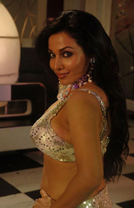 asha saini cleavege photo gallery