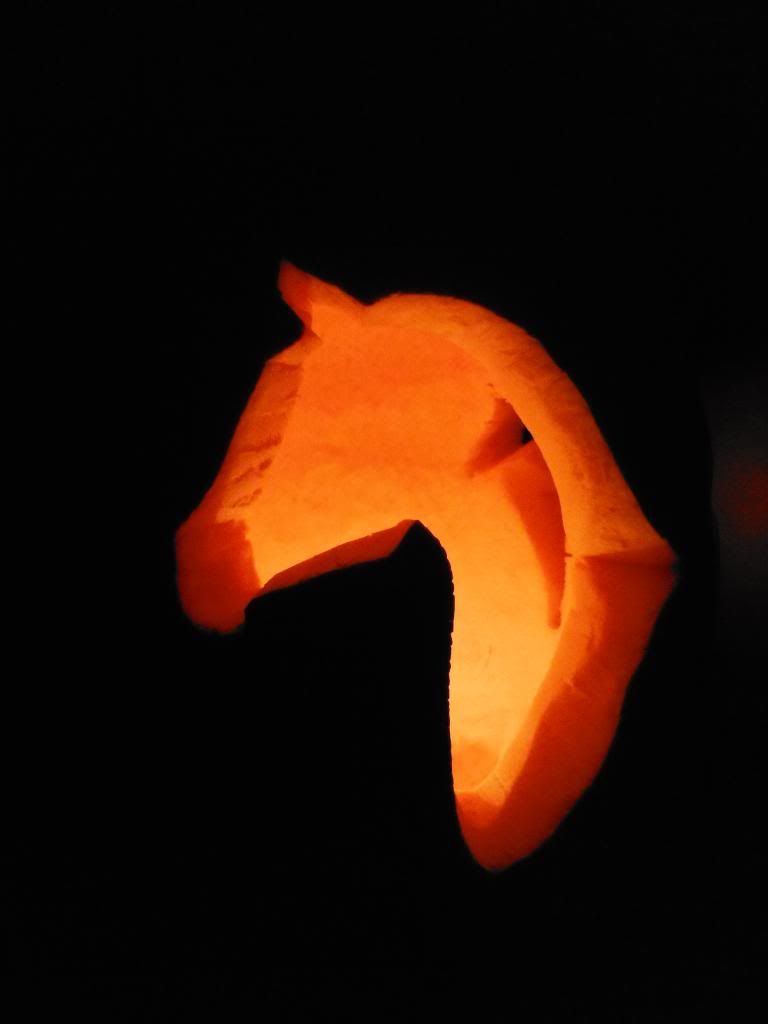 Can horses eat pumpkin tack n tails