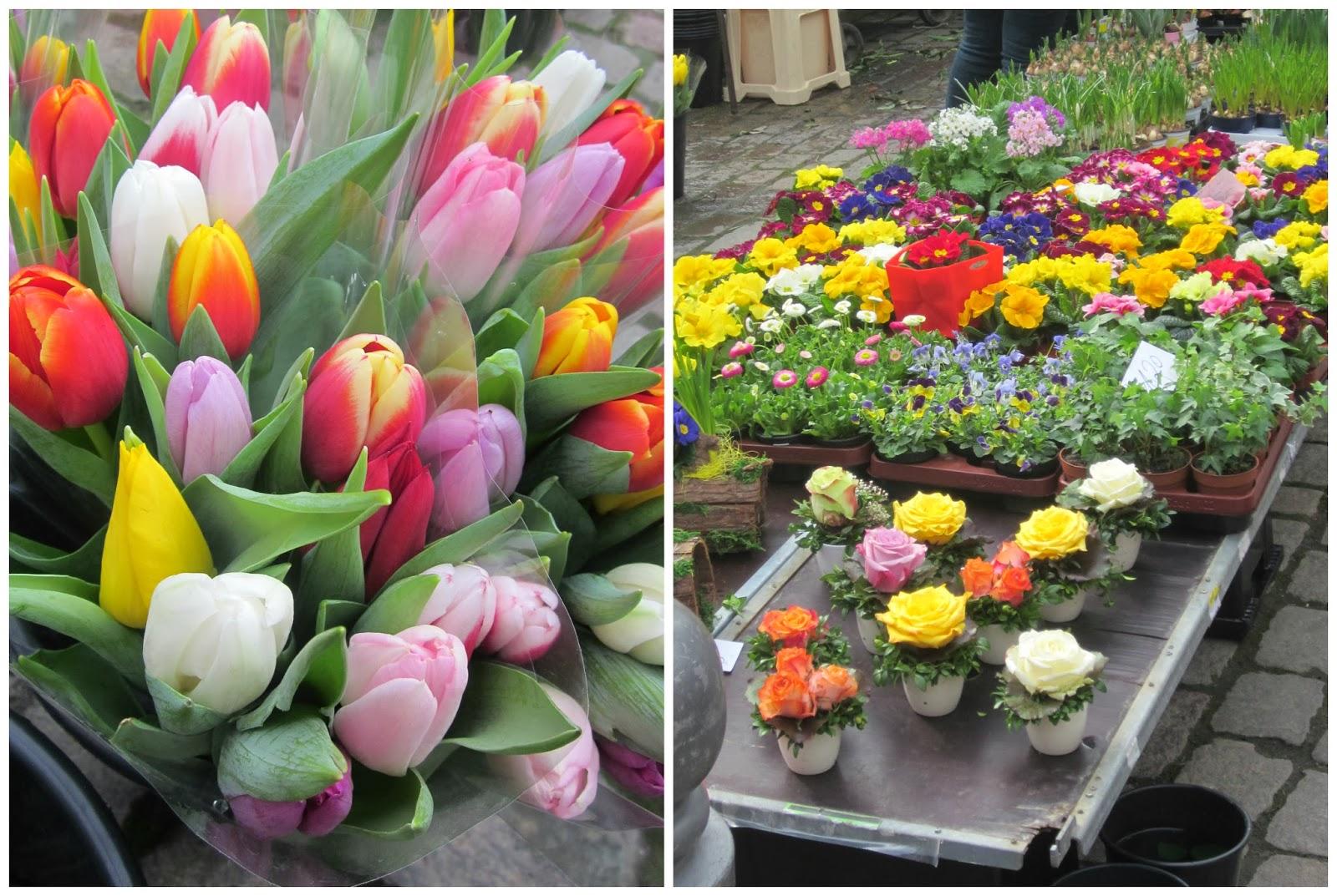 flower market marburg