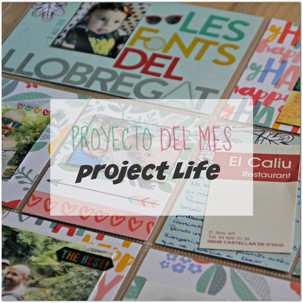 Proyecto del mes en FSN