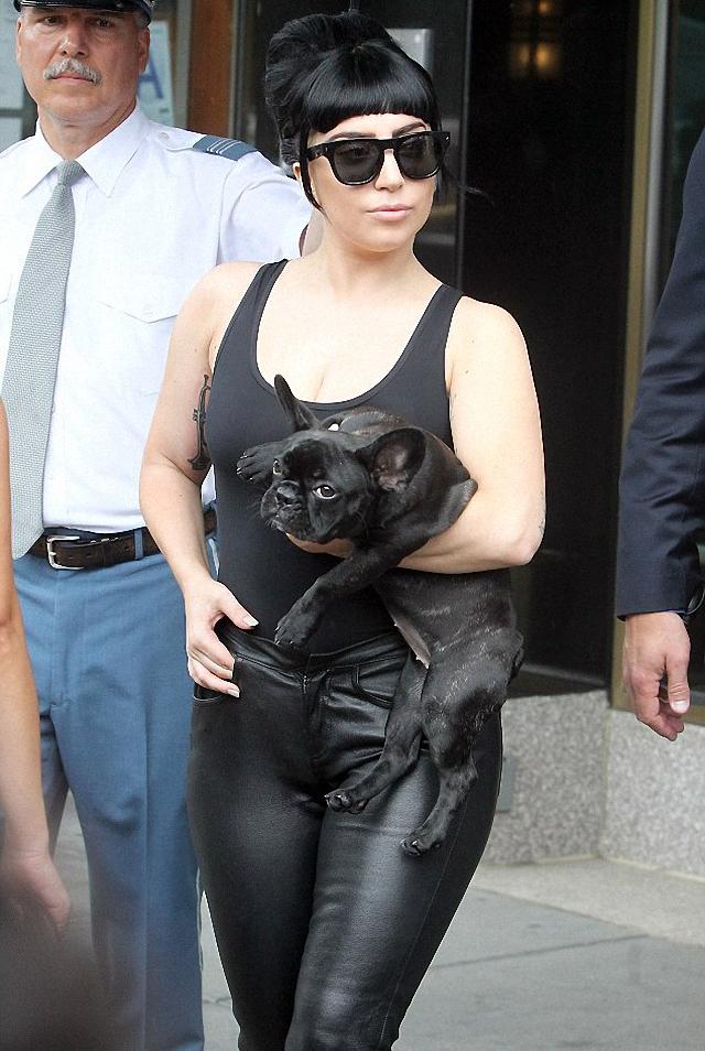 Lady Gaga luce así por estos días