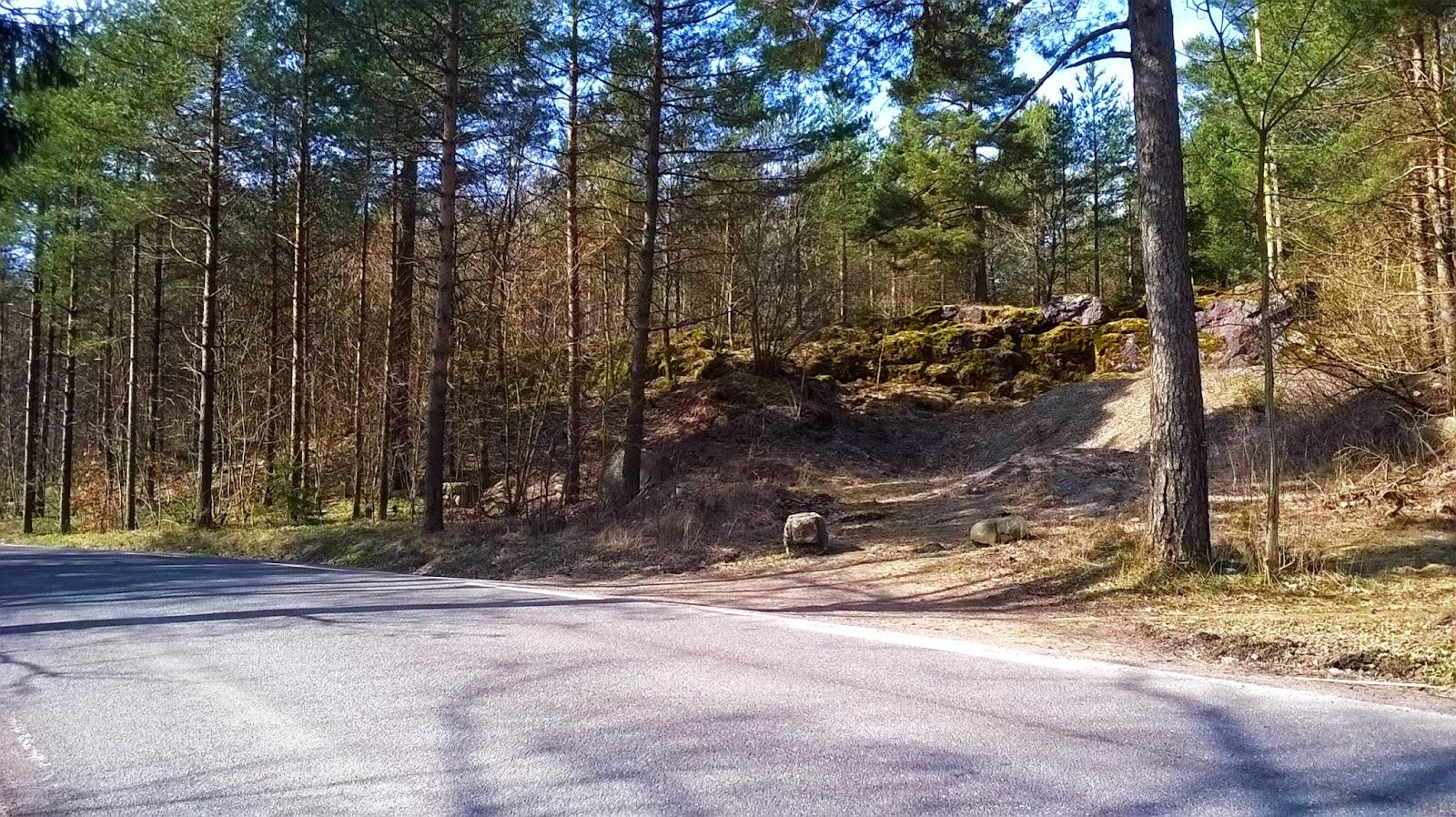 norwegia i leśny zakątek
