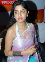 Poonam, kaur, hot, saree, navel, photos