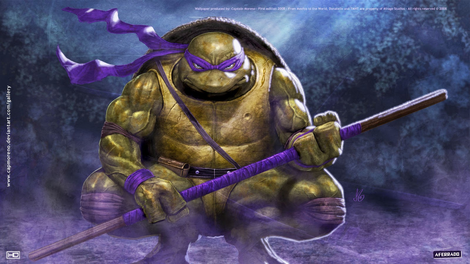 http://1.bp.blogspot.com/-PZ5ZcdARYew/ULN4DgcW6JI/AAAAAAAAA98/k-FLpBzB8Rw/s1600/purple-teenage-mutant-ninja-turtles-donatello-1920x1080-wallpaper.jpg