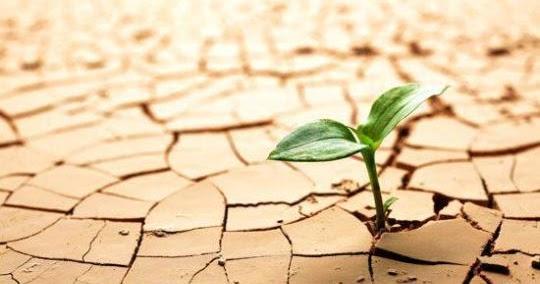 Resiliencia. Existen factores que facilitan o dificultan la superación de la adversidad