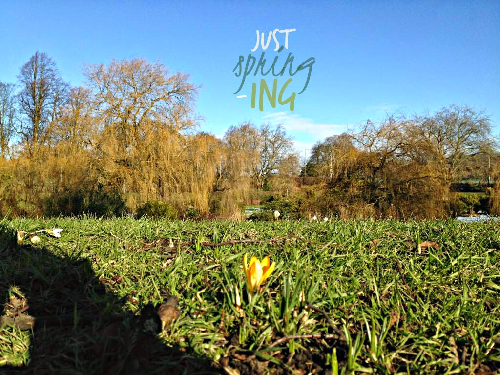 Just Spring-ing