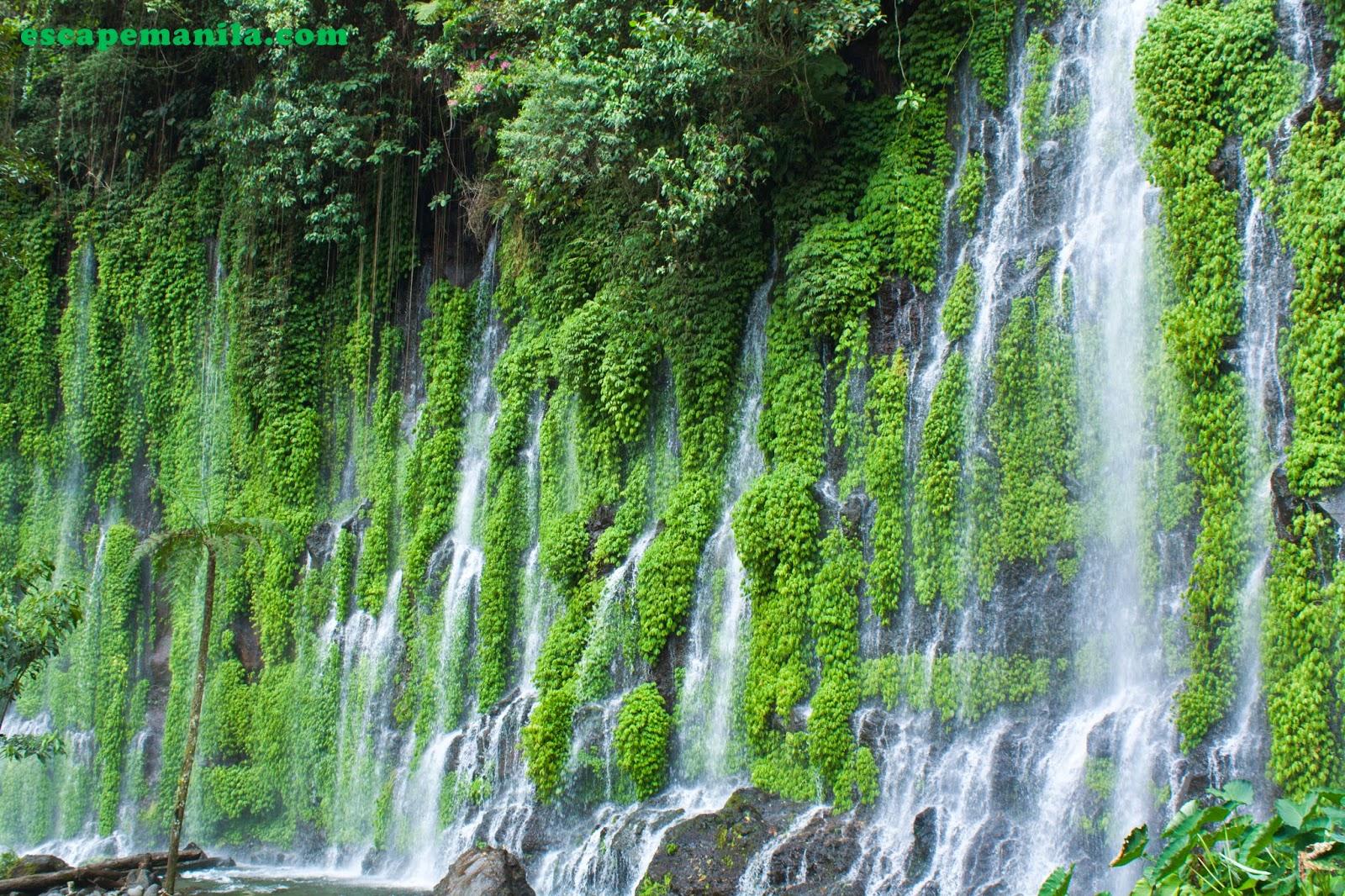 Travel Guide Asik Asik Falls Alamada Cotabato on Modes Of Transportation